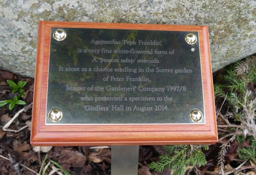 polished brass plaque